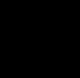 示 Bronze script Late Shang dynasty (~1100 BC)