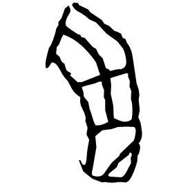羽 Oracle script (~1250-1000 BC)