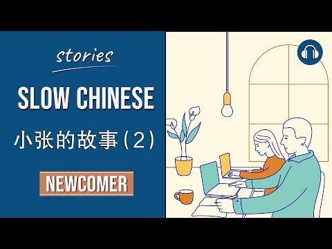 小张的故事 (2)  Xiaozhang's story