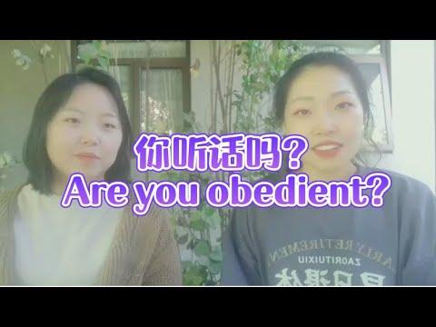 你听话吗? Are you obedient?